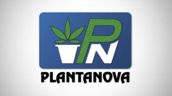 Plantanova